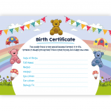 Birth Certificate (Unbranded)
